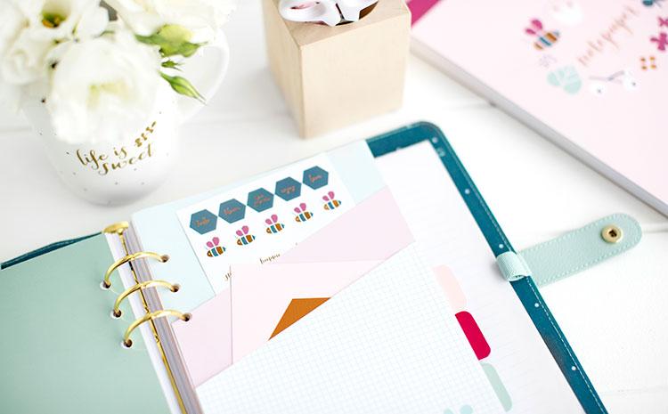 Folder/Pocket